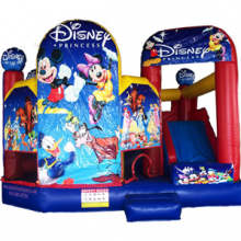 Disney-bouncer-kids-inflatable-party